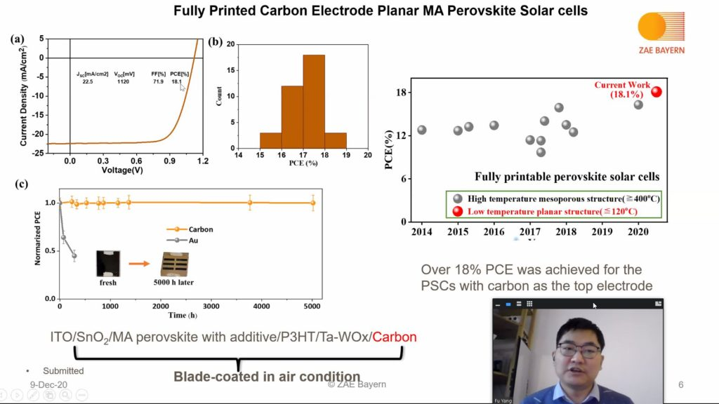 Performance of a fully printed PSK Cell