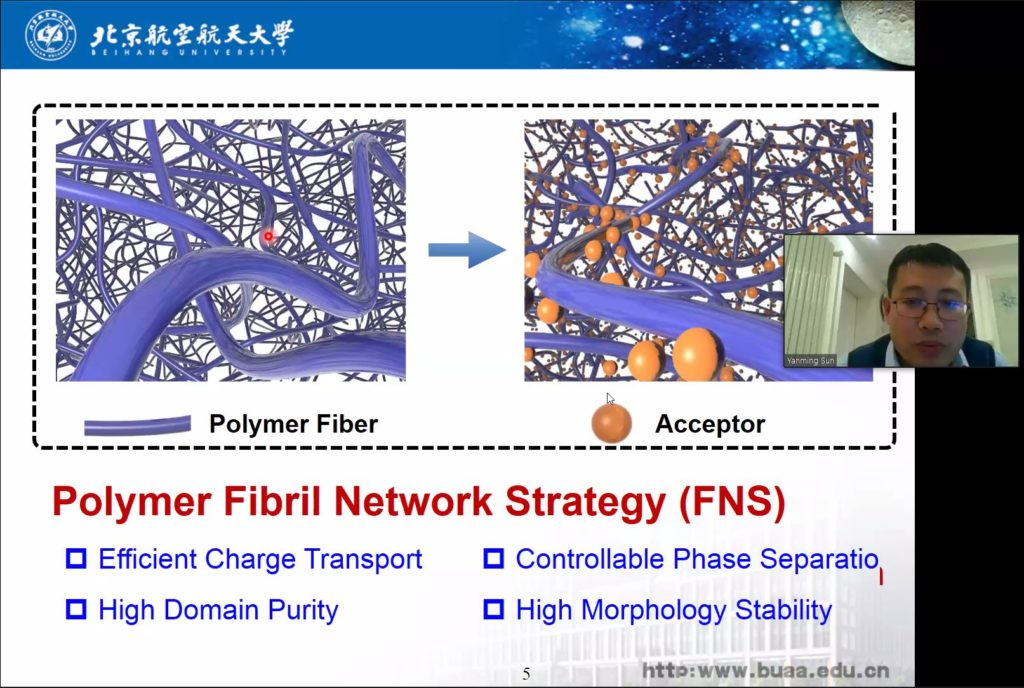 Poylymer Fibrils